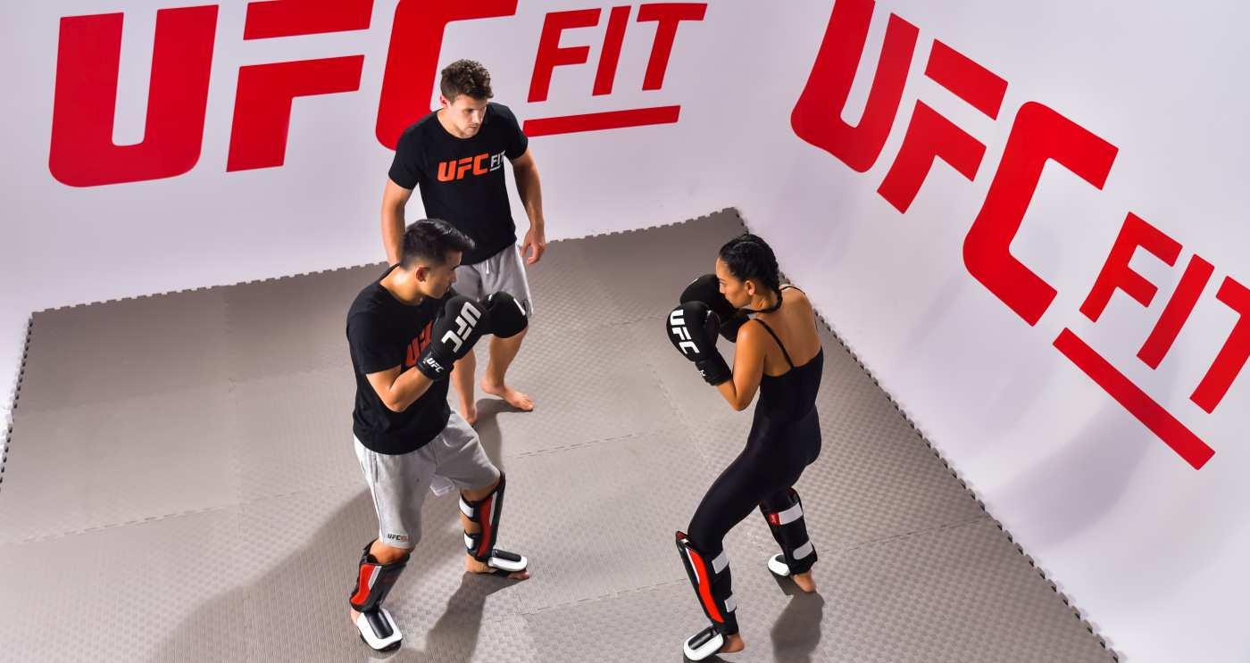 UFC Fit